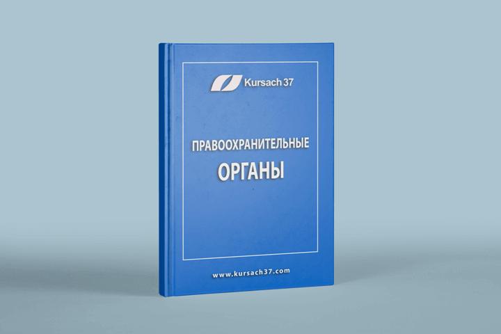 Правоохранительные органы учебник