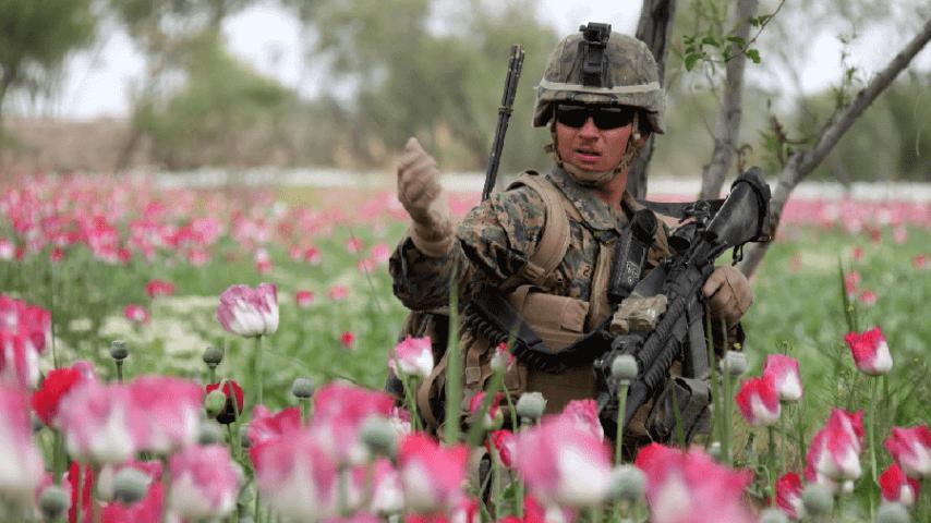 Суть военной кафедры